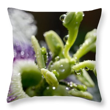 Drop Of Passion Throw Pillow by Priya Ghose