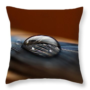 Drop On A Bluejay Feather Throw Pillow by Susan Capuano