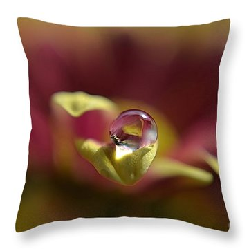 Throw Pillow featuring the photograph Drop On Petal by Michelle Meenawong