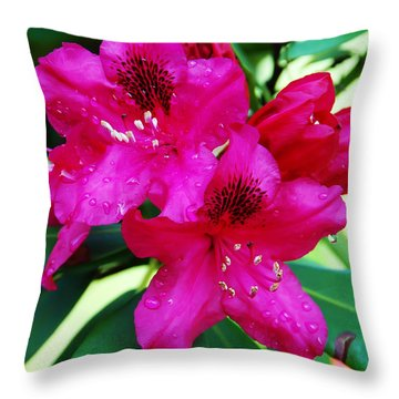 Droplet Throw Pillow by Aimee L Maher Photography and Art Visit ALMGallerydotcom
