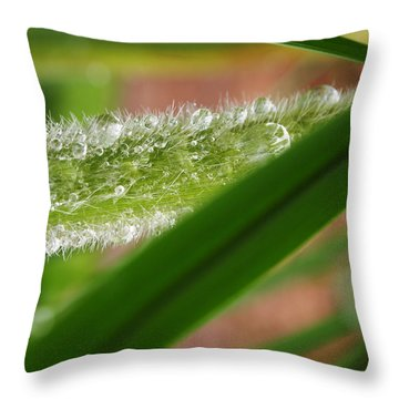 Throw Pillow featuring the photograph Droplets Of Life by Deborah Fay