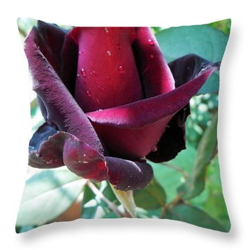 Throw Pillow featuring the photograph Droplets On The Petals by Vesna Martinjak