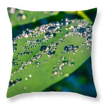 Throw Pillow featuring the photograph Droplets by Rob Sellers