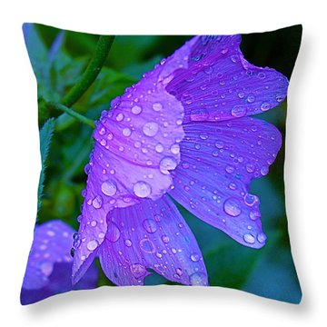 Drops Of Delight Throw Pillow by Rita Mueller