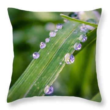Throw Pillow featuring the photograph Drops On Grass by Rob Sellers