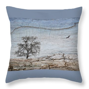 Drought Throw Pillow by Alice Cahill