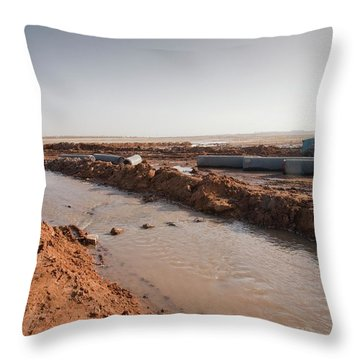 Earth Changes Throw Pillows