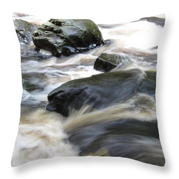 Drowning Images Throw Pillow by Richard Reeve