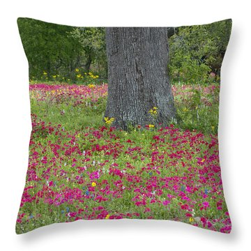 Throw Pillow featuring the photograph Drummonds Phlox And Crown Tickweed Central Texas by Dave Welling