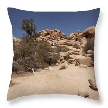 Dry Air Throw Pillow by Amanda Barcon