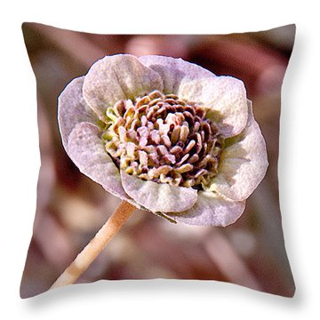 Throw Pillow featuring the photograph Dry Bloom by Mae Wertz