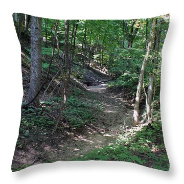 Dry Creek Throw Pillow