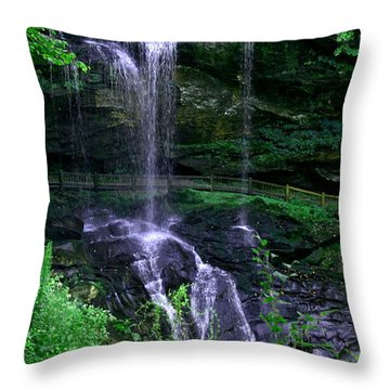 Dry Falls Throw Pillow
