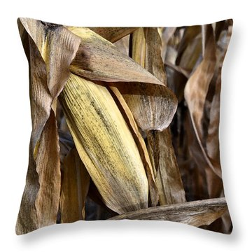 Throw Pillow featuring the photograph Dry Husk Wc  by Lyle Crump