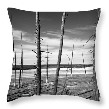 Dry Lake Bed Throw Pillow by Tarey Potter