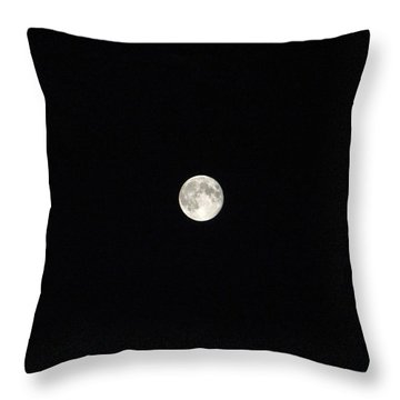 Dry Moon Throw Pillow