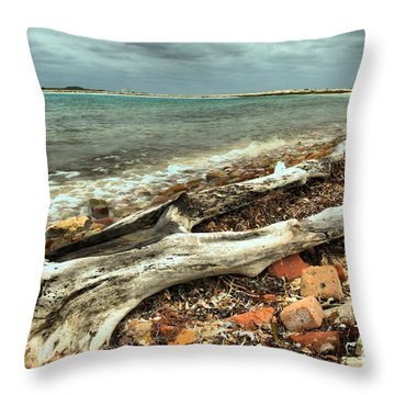 Dry Tortugas Driftwood Throw Pillow by Adam Jewell
