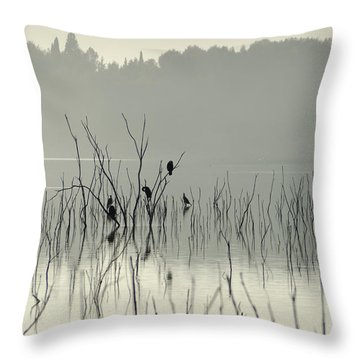 Drying In The Sun Throw Pillow by Guido Montanes Castillo