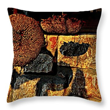 Drying Out Throw Pillow by Chris Berry