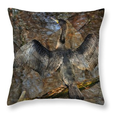 Drying Time Throw Pillow by Marty Koch