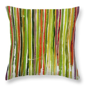 D.s. Color Band Skinny Throw Pillow