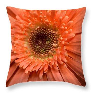 Dsc260d2 Throw Pillow by Kimberlie Gerner