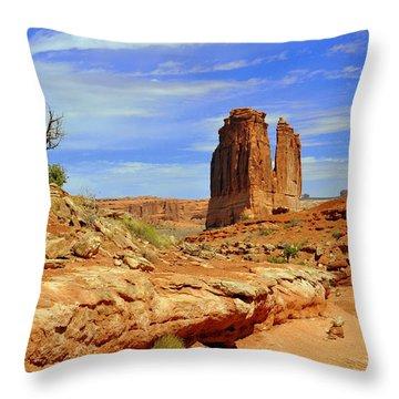 Dsc_3690.jpg Throw Pillow by Marty Koch