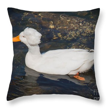 White Crested Duck Throw Pillow by Ernest Puglisi