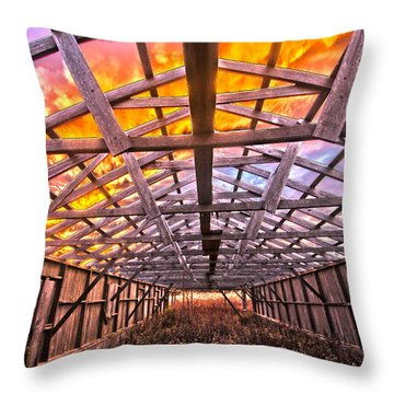 Duck Farm Skeleton Skylight Throw Pillow