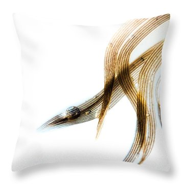 Duck Feather And Water Drops Throw Pillow by Bob Orsillo