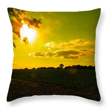 Duck Flying Low Cloud 2 Throw Pillow
