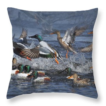 Duck Frenzy Throw Pillow by Angie Vogel