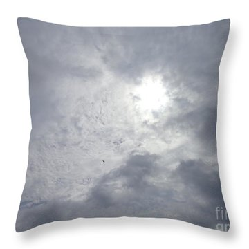 Duck In Beautiful Sky Throw Pillow