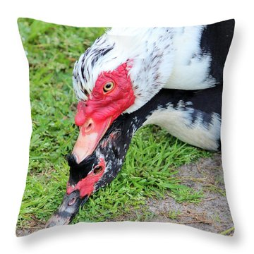 Duck Love Throw Pillow by Cynthia Guinn