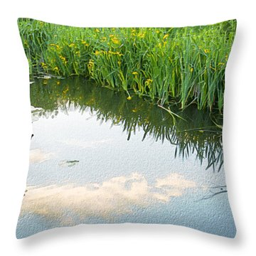 Duck On A Lake Throw Pillow by Svetlana Sewell