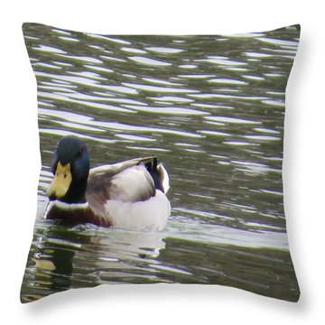 Duck Out For A Swim Throw Pillow