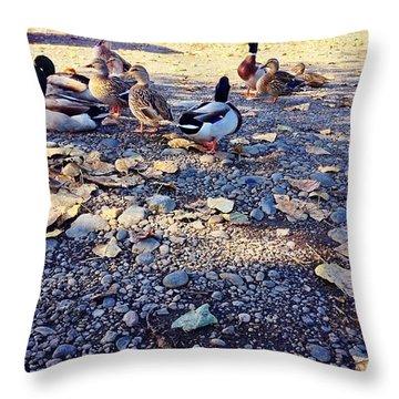 Duck Parade On The Beach Clackamette Park Throw Pillow