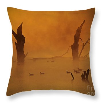 Duck Pond Throw Pillow by Elizabeth Winter