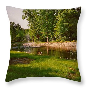 Duck Pond With Water Fountain Throw Pillow by Amazing Photographs AKA Christian Wilson