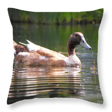 Duck Reflections Throw Pillow by Erick Schmidt