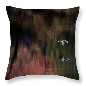 Duck Scape 3 Throw Pillow