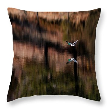 Duck Scape Throw Pillow