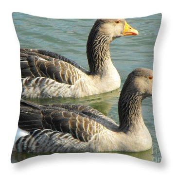Duck Twins Throw Pillow by Erick Schmidt