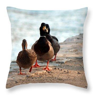 Duck Walk Throw Pillow