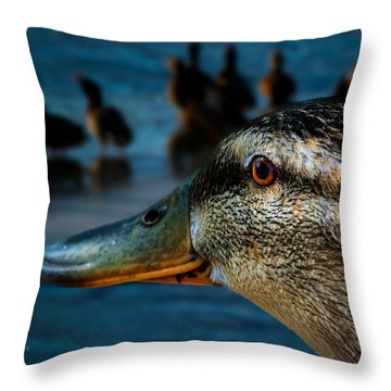 Duck Watching Ducks Throw Pillow by Bob Orsillo
