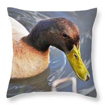 Duck With Greenish-yellow Bill Throw Pillow