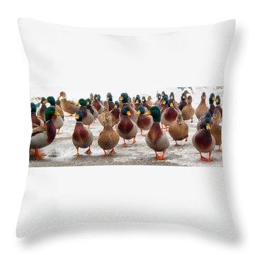 Duckorama Throw Pillow
