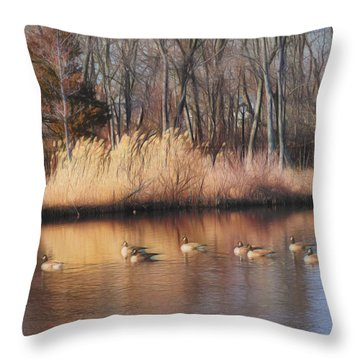 Duckpond In Winter Throw Pillow by Mikki Cucuzzo