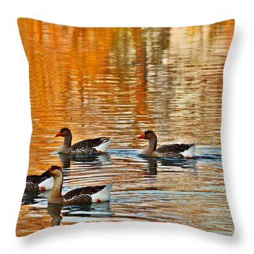 Throw Pillow featuring the photograph Ducks In The Fall by Lynn Hopwood