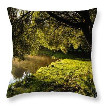 Ducks Of The Dawn Throw Pillow